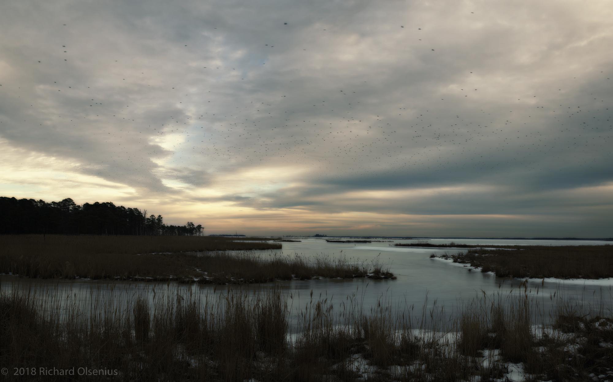 Bay Landscapes-28