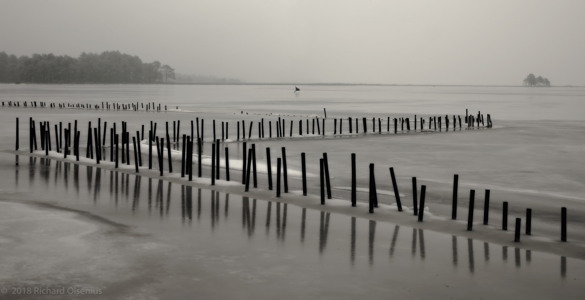 Bay Landscapes-29