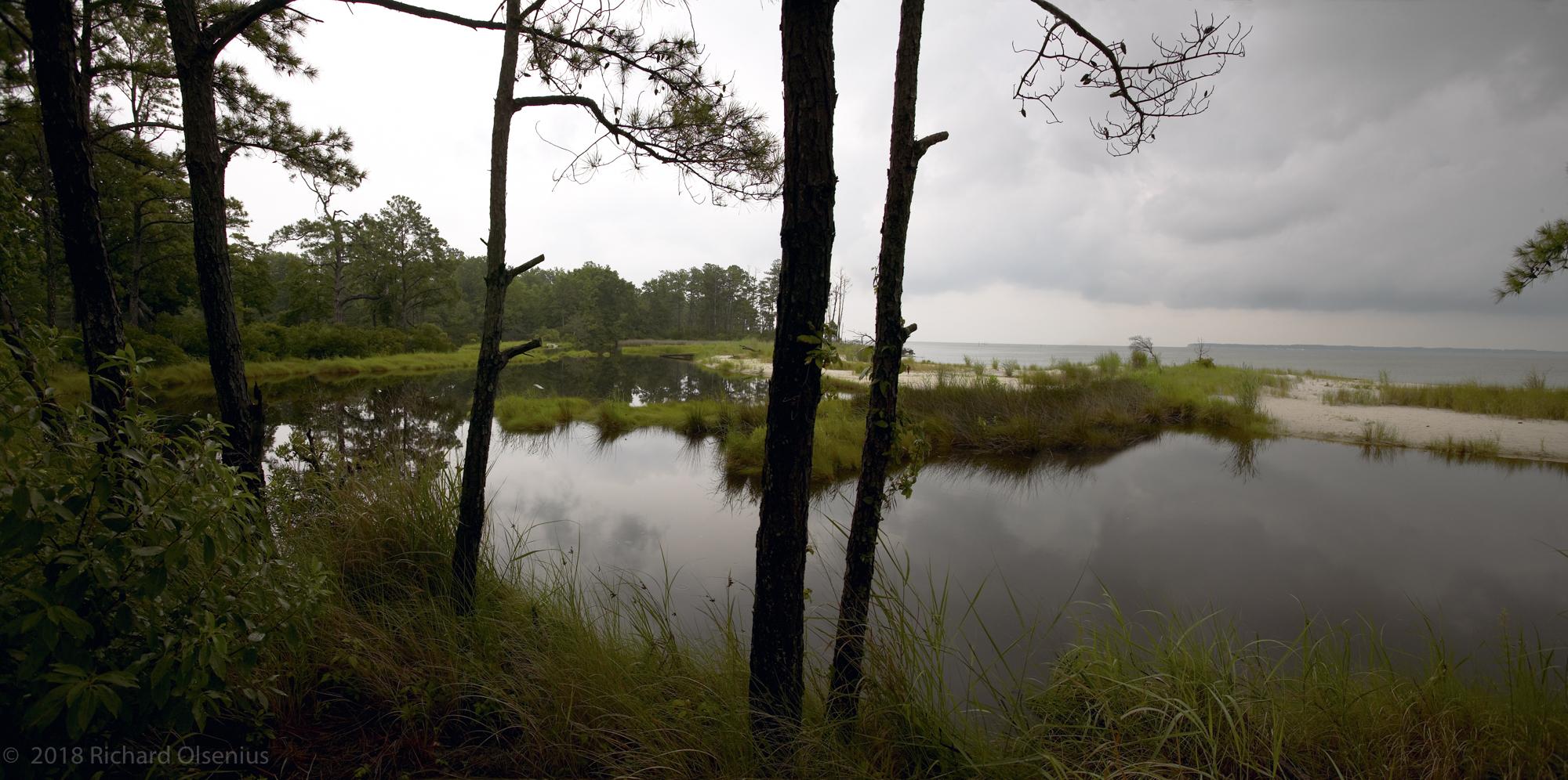 Bay Landscapes-42