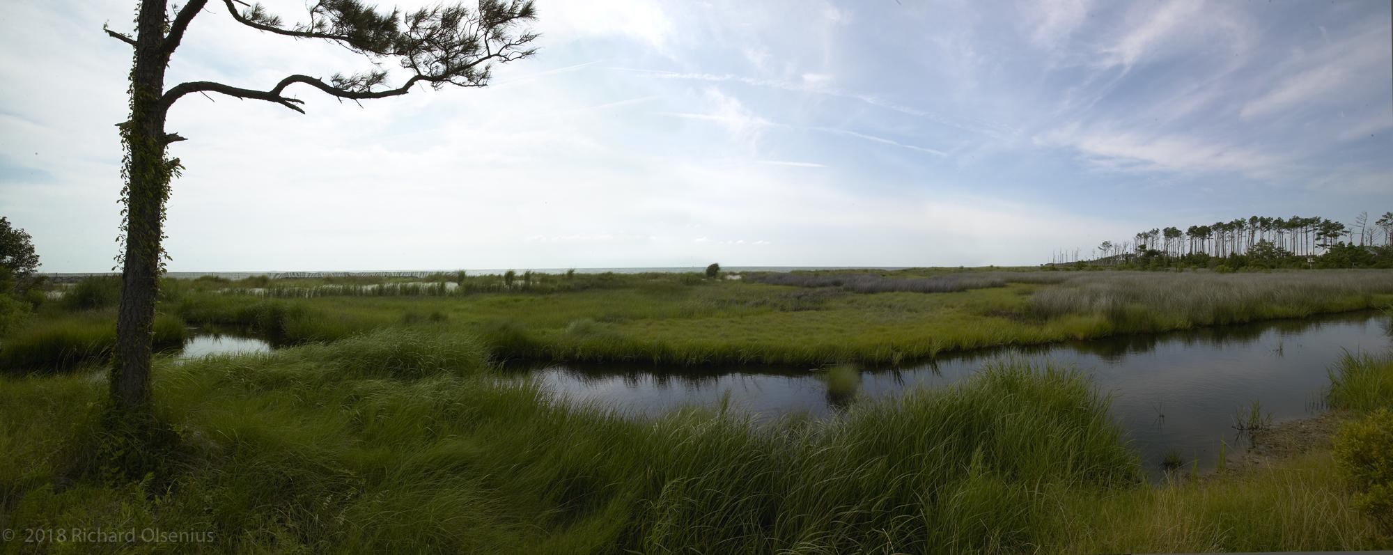 Bay Landscapes-43