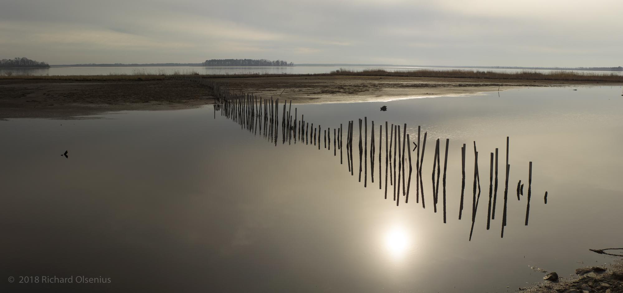 Bay Landscapes-56
