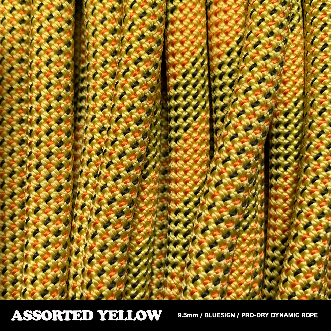 ASSORTED-YELLOW.jpg