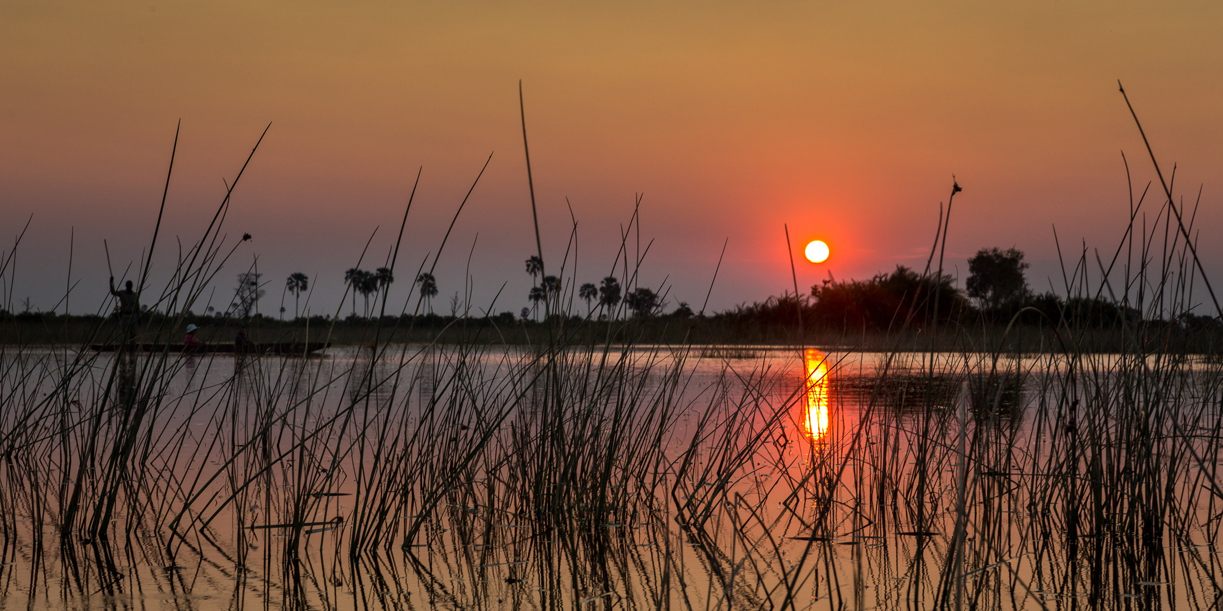 OKAVANGO DELTA SAFARI - 31 OCTOBER – 9 NOVEMBER 2020