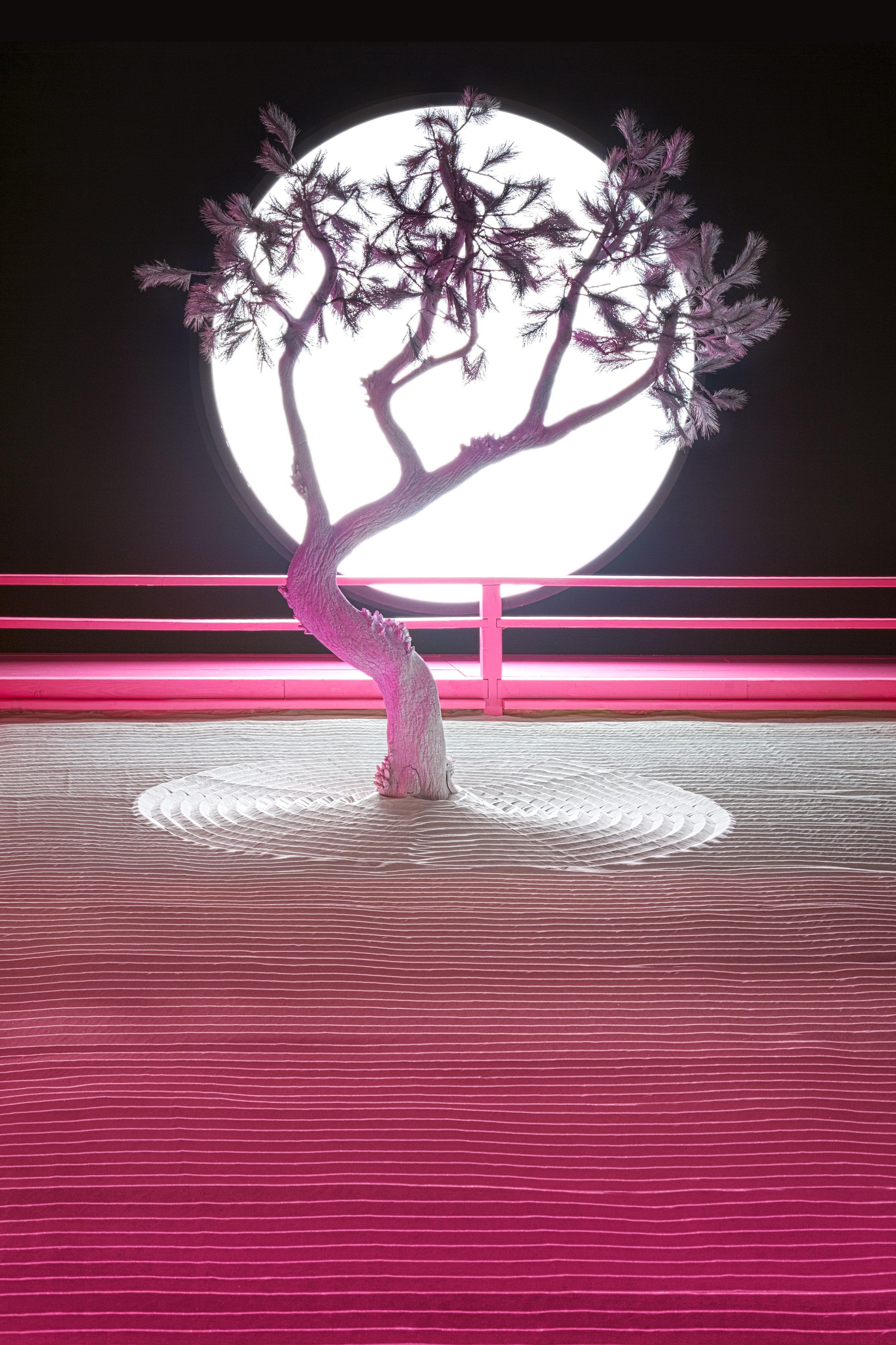 Visionaire_Daniel-Arsham_Lunar-Garden_1.jpg