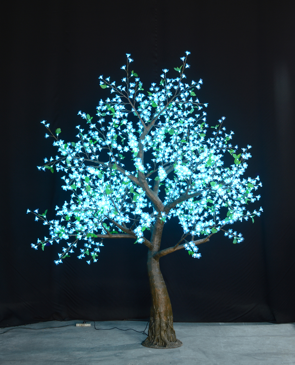 9' Flatiron Color Changing Cherry Blossom Tree - Cyan color