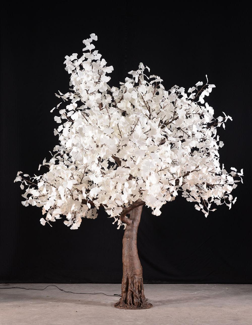 9' Flatiron Maple Tree - Warm white