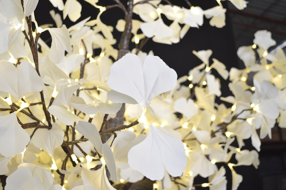 White Gingko Leaves