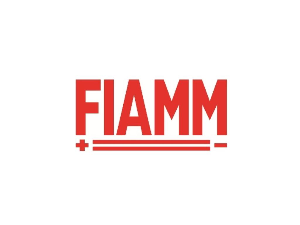 IMEX_FIAMM.jpeg