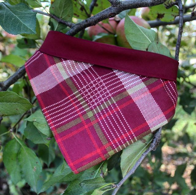 We have completely restocked our Apple Harvest Bandana! This bandana was designed in collaboration with @dogsofthemitten and can be purchased with their logo on it too! It is perfect for your next trip to the Apple orchard or fall outing with your pup! I'm so excited that we were able to get more of this fabric in! #perseveringpack #dogaccessories #dogbandana #dogfashion #dogmodel #dogphotography #dogsofthemitten #dogsofmichigan #doodlesofmichigan #dogbowtie #dogsandpals #weeklyfluff #dailybarker #labsofinstagram #applepicking #appleorchard #itsfallyall