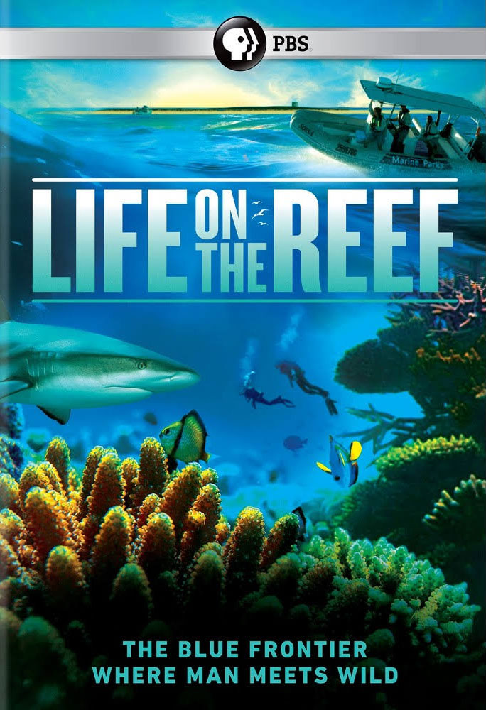 life-on-the-reef.jpg