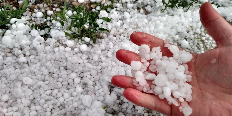 Hail Damage -