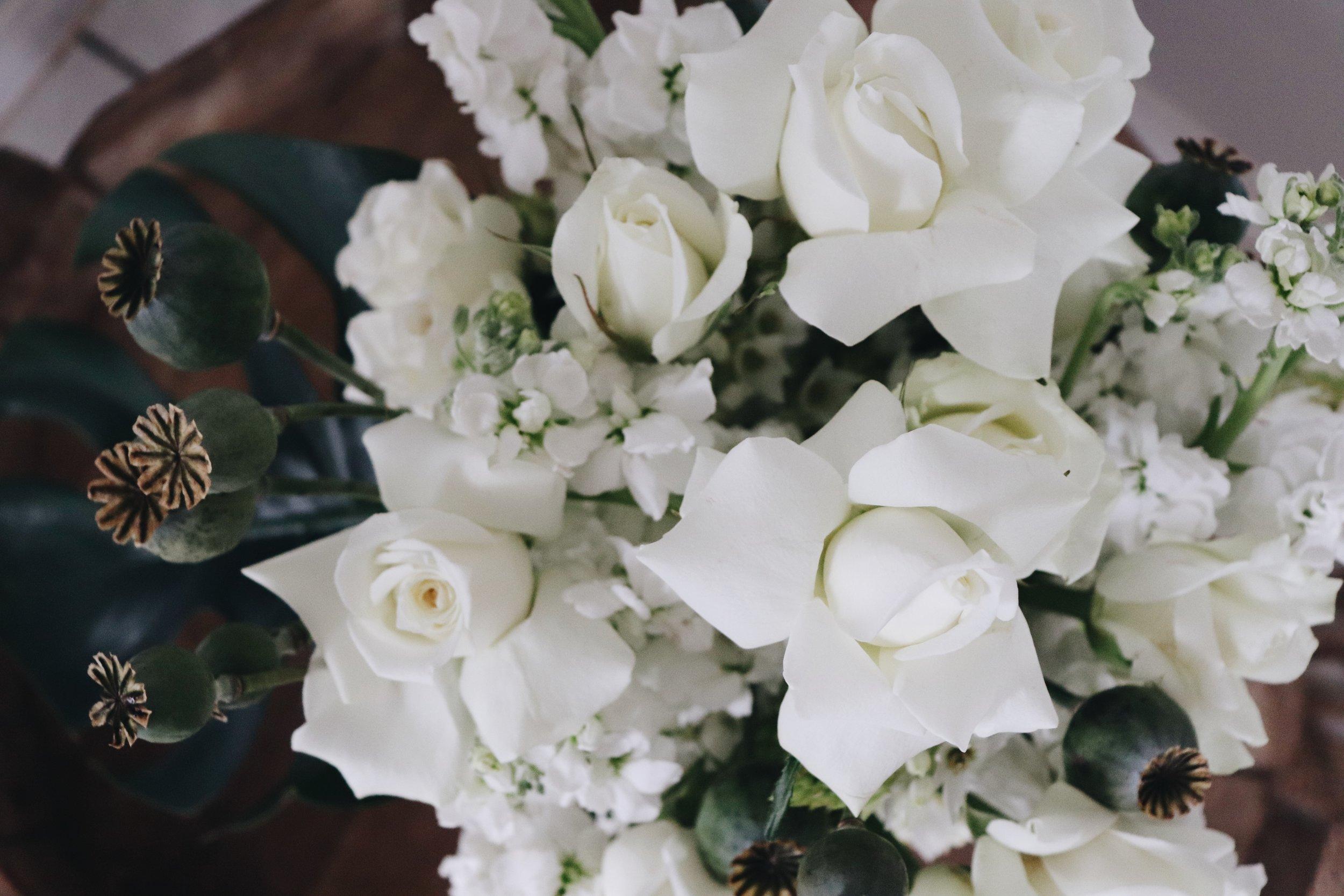 cairns_eventplanner_crystalcaves_style_weddings_design_portdouglas_weddingstylist_weddingflowerscairns_stylist_queensland_roses_thecollectionco_weddingphotographer.JPG