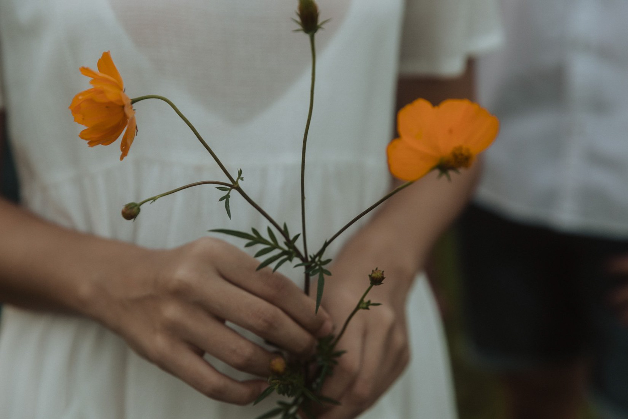 Styled Photshoot - Orchard Picnic Cairns  - Event Styling and Catering by The Collection Co-25.jpg
