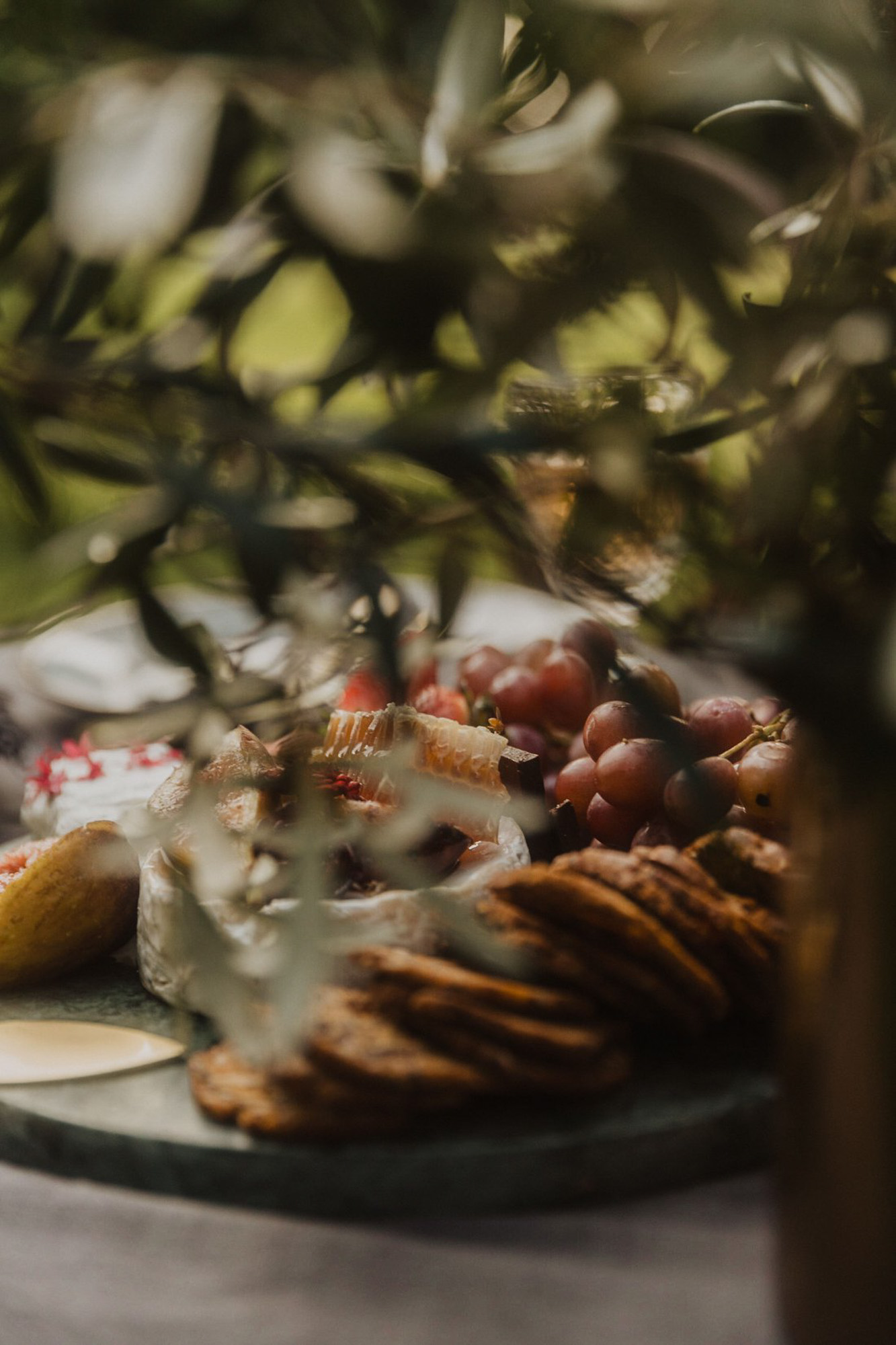 Styled Photshoot - Orchard Picnic Cairns  - Event Styling and Catering by The Collection Co-17.jpg
