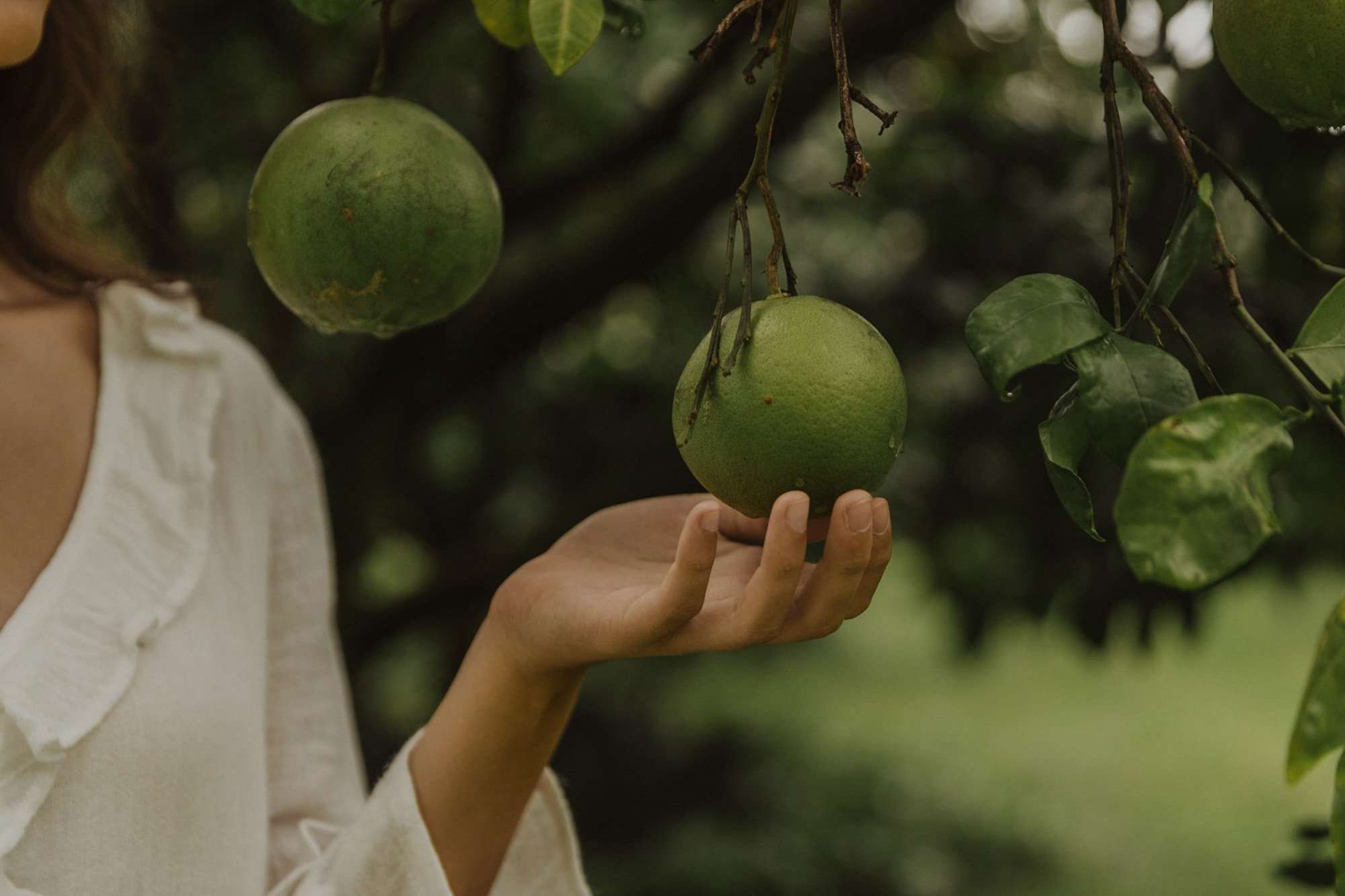 Styled Photshoot - Orchard Picnic Cairns  - Event Styling and Catering by The Collection Co-10.jpg
