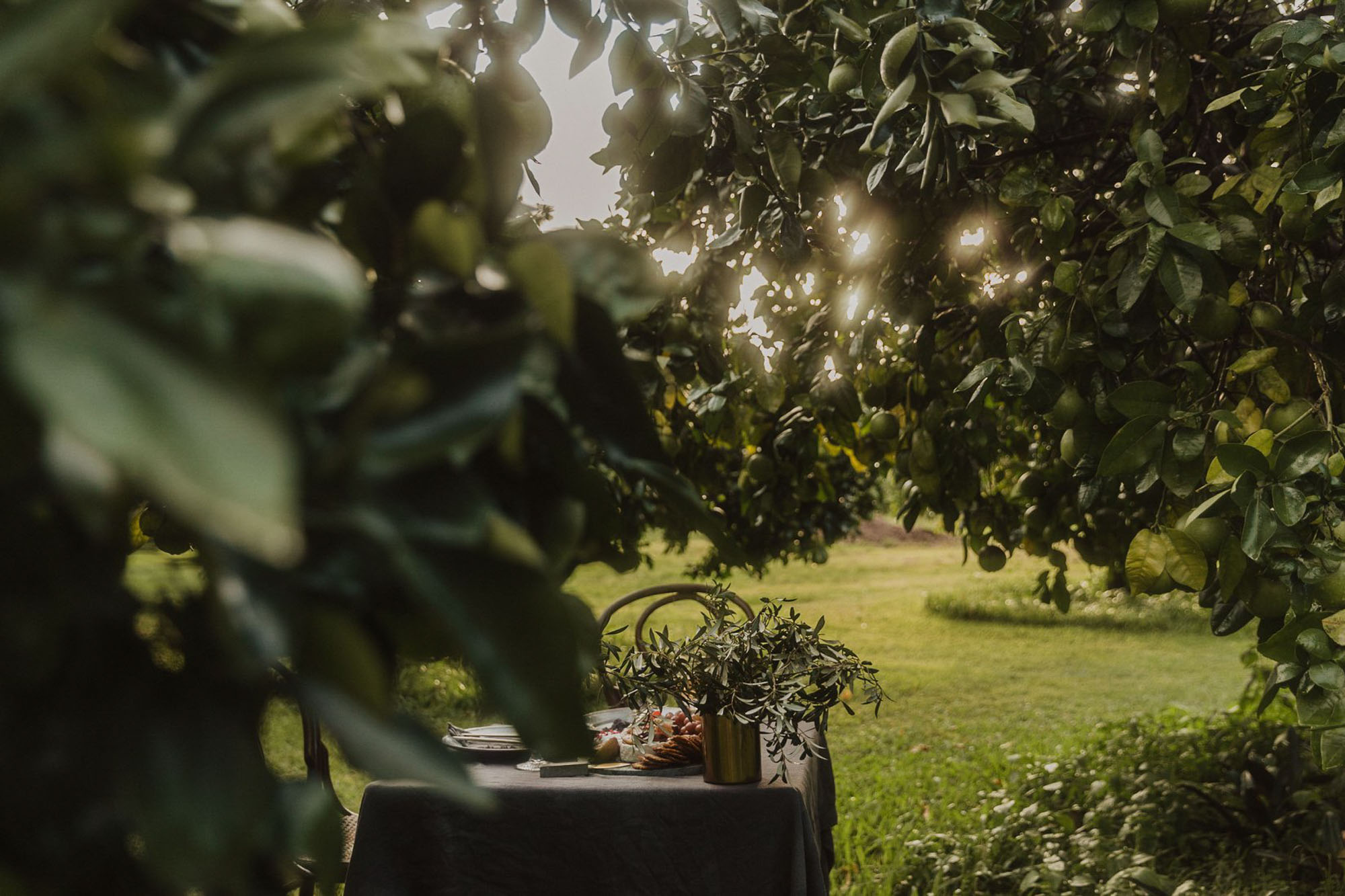Styled Photshoot - Orchard Picnic Cairns  - Event Styling and Catering by The Collection Co-5.jpg