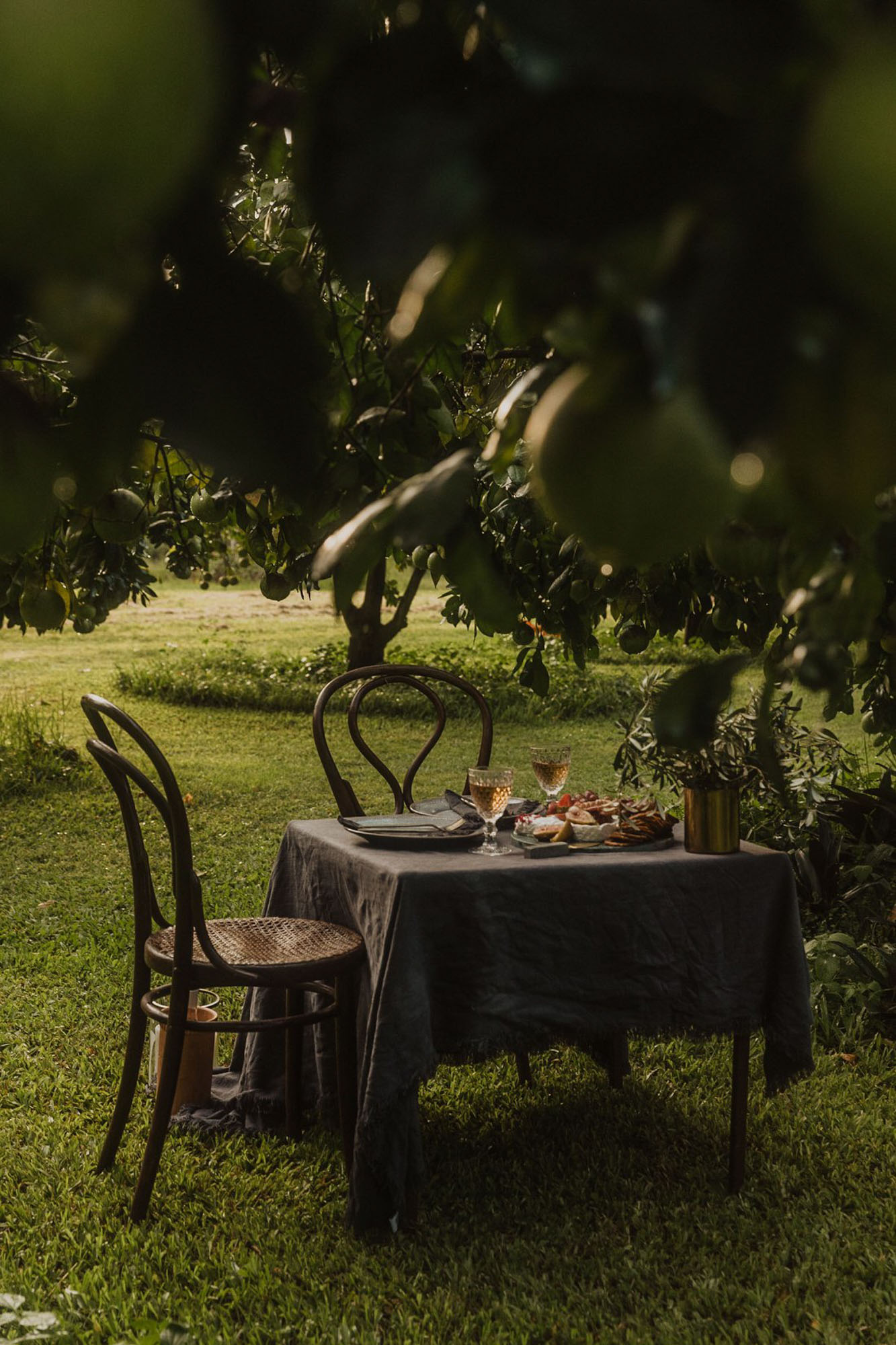 Styled Photshoot - Orchard Picnic Cairns  - Event Styling and Catering by The Collection Co-3.jpg