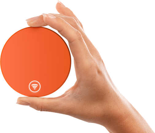 [image by SkyRoam]