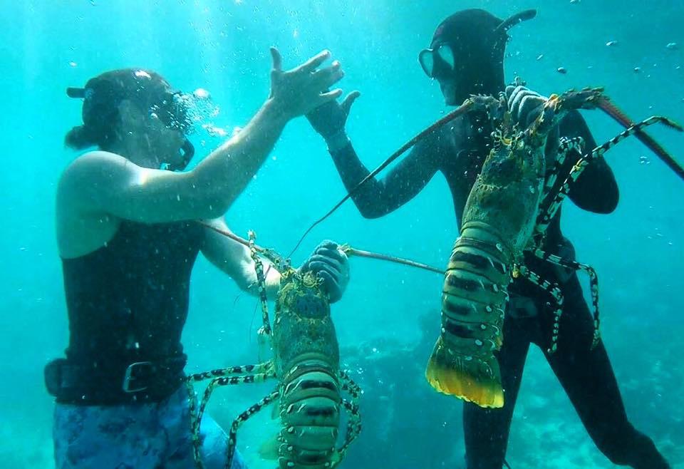 Freediving-4.jpg