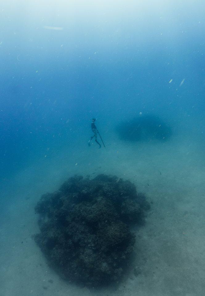 Freediving-1.jpg