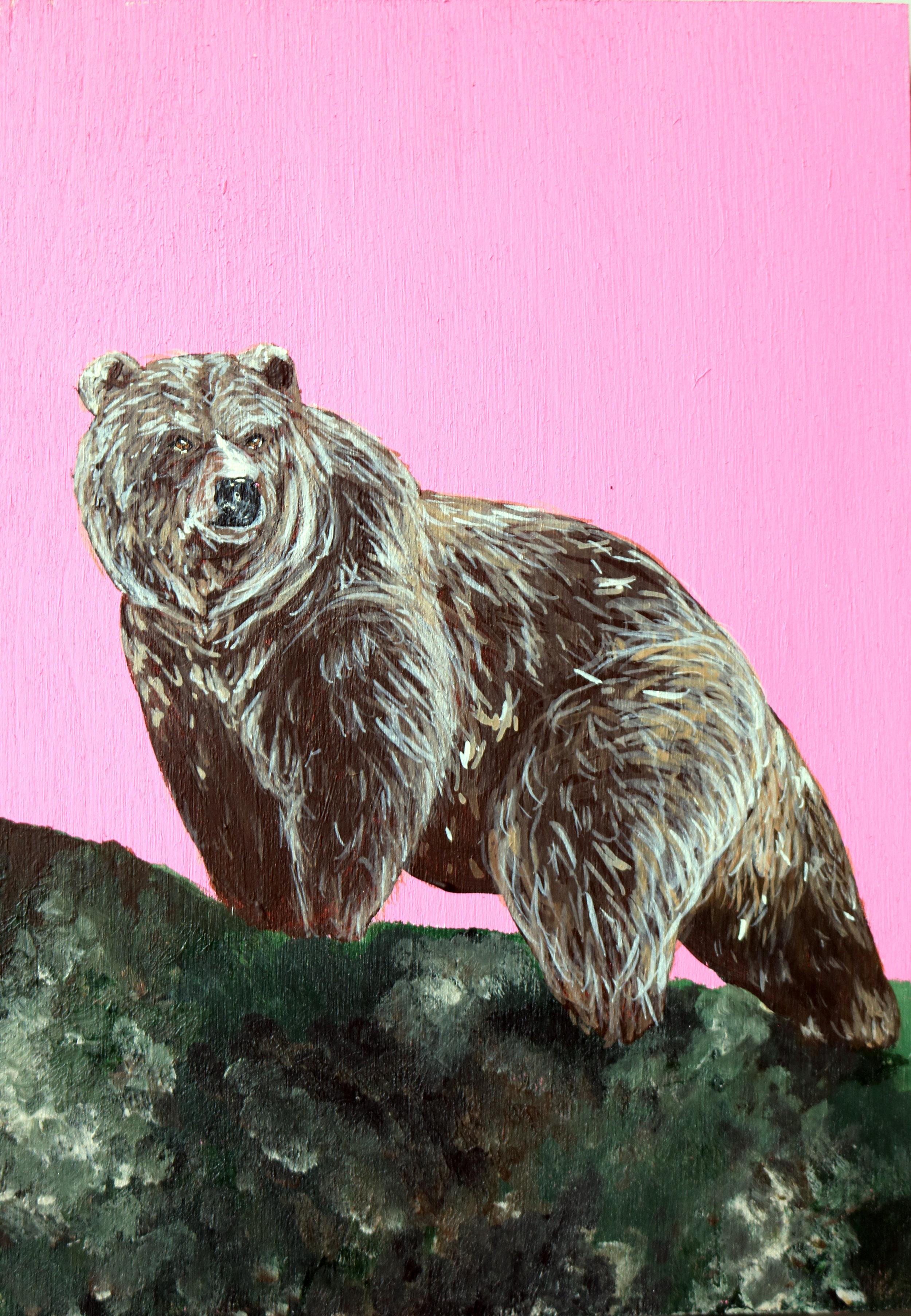 bear4x6.jpg