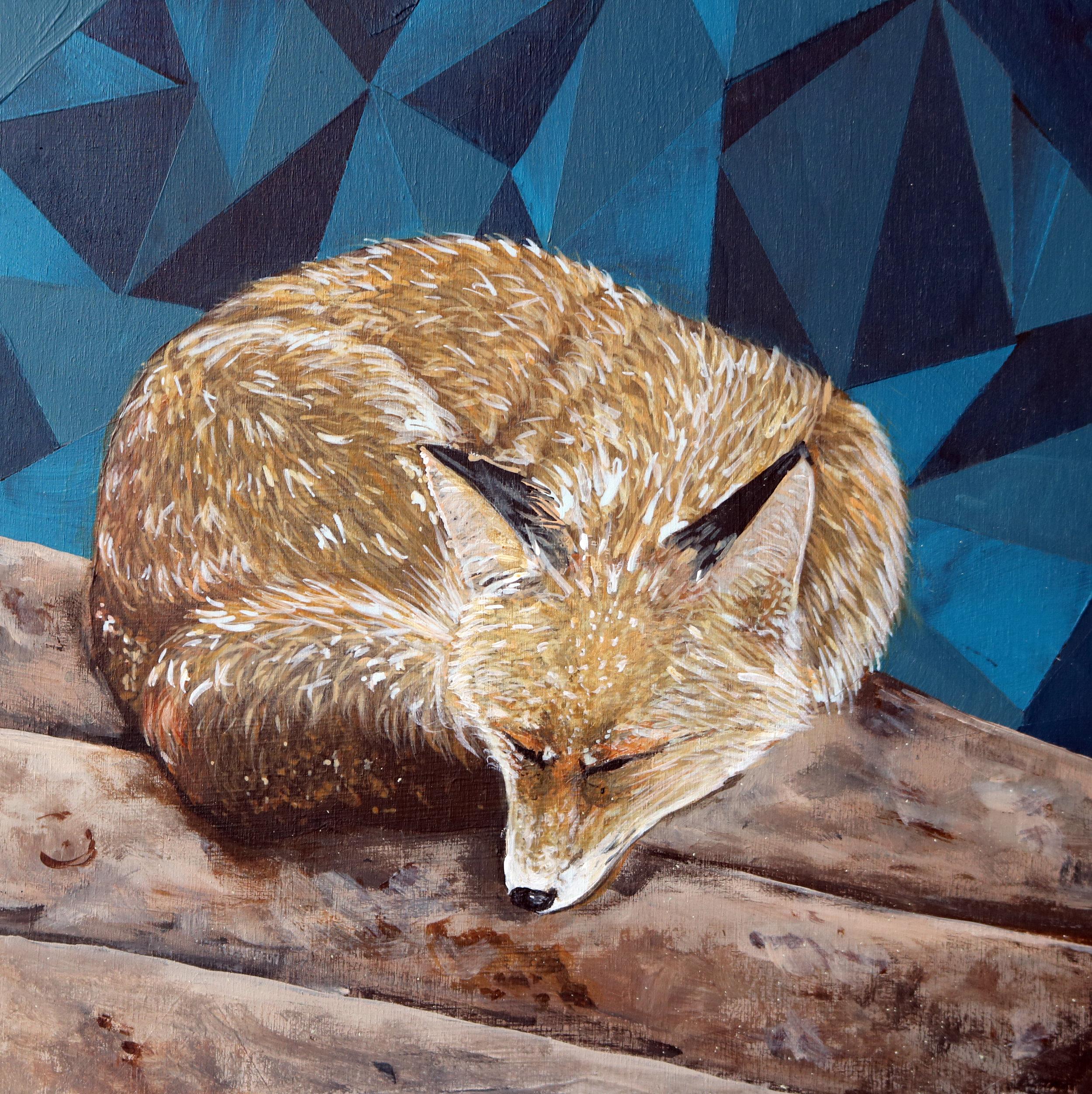 fox8x8.jpg