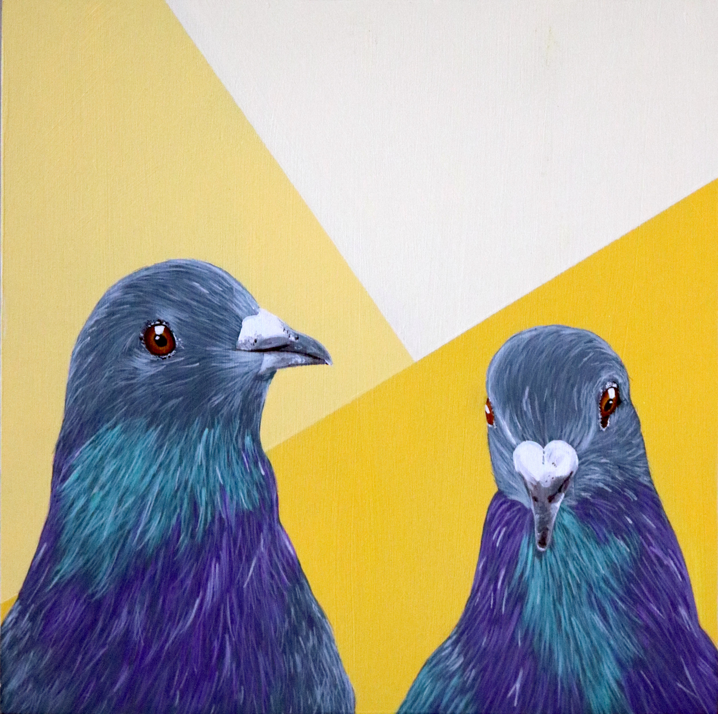 Pigeon Couple.jpg