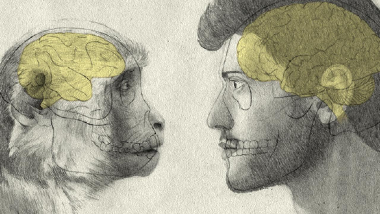 Illustration:  reatch  /  Nora Gamper