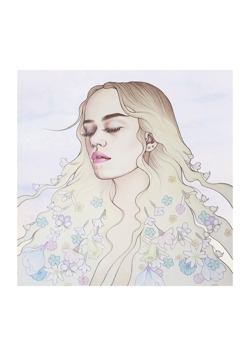 Illustration by  Emilie Steele