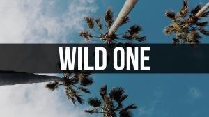 WildOne2.jpg