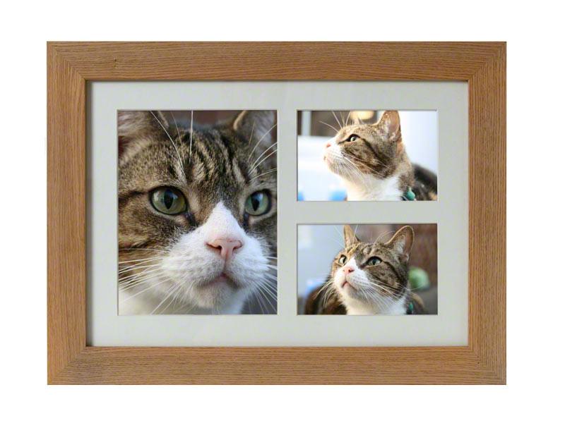 Tribute Frame   De eiken fotolijst urn bevat een ruimte waarin u de as van uw geliefde huisdier kunt bewaren .  In deze lijst kunt u meerdere foto's plaatsen, 1 foto van 25 x 20 cm en 2 stuks van 17 x 12.5 cm.  De urn heeft een inhoud van 3900 cc.  De fotolijst is leverbaar in de kleuren Oak €150,-, Pewter €180,- en Walnut €180,-.  .