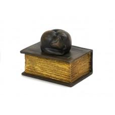 CASBO-CAT-BRZ  Met dit schattige slapende katje op een boek heeft u een mooie herinnering aan uw geliefde huisdier.  Deze slapende kat is gegoten uit kunsthars en afgemaakt met een bronzen finish.  CASBO-CAT-BRZ € 30,00 / 370 CC