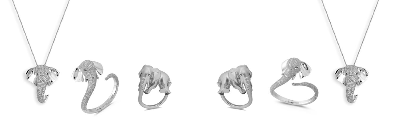 Elephant Fabio Angri Animal download image png render stock elephant herbivore mammal mammals species. elephant fabio angri