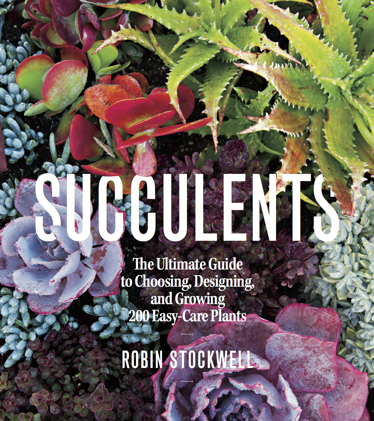 BLAD-Succulents Cover.png