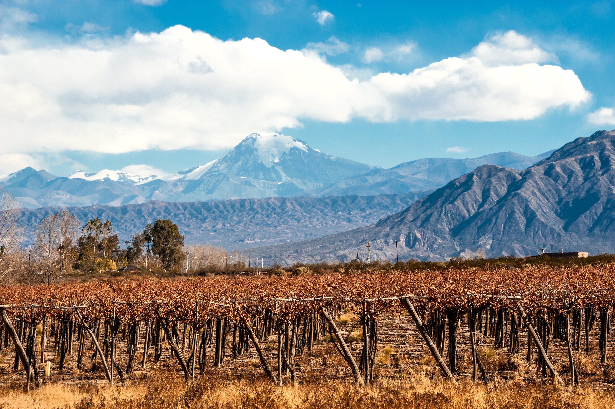 AS - Mendoza winery region.jpeg