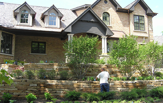 Front yard plantings feature a group of serviceberry underplanted with woodland natives.