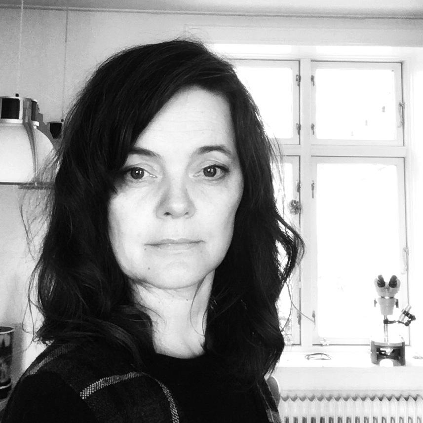 Karin Priergaard Worsøe  Filminstruktør  DFI