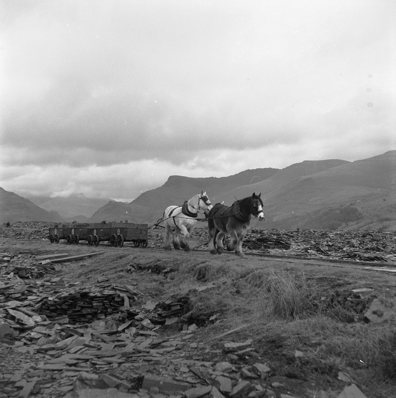 The_horse_drawn_railway_at_Dyffryn_Nantlle_before_its_closure_in_1959_(12118311394).jpg