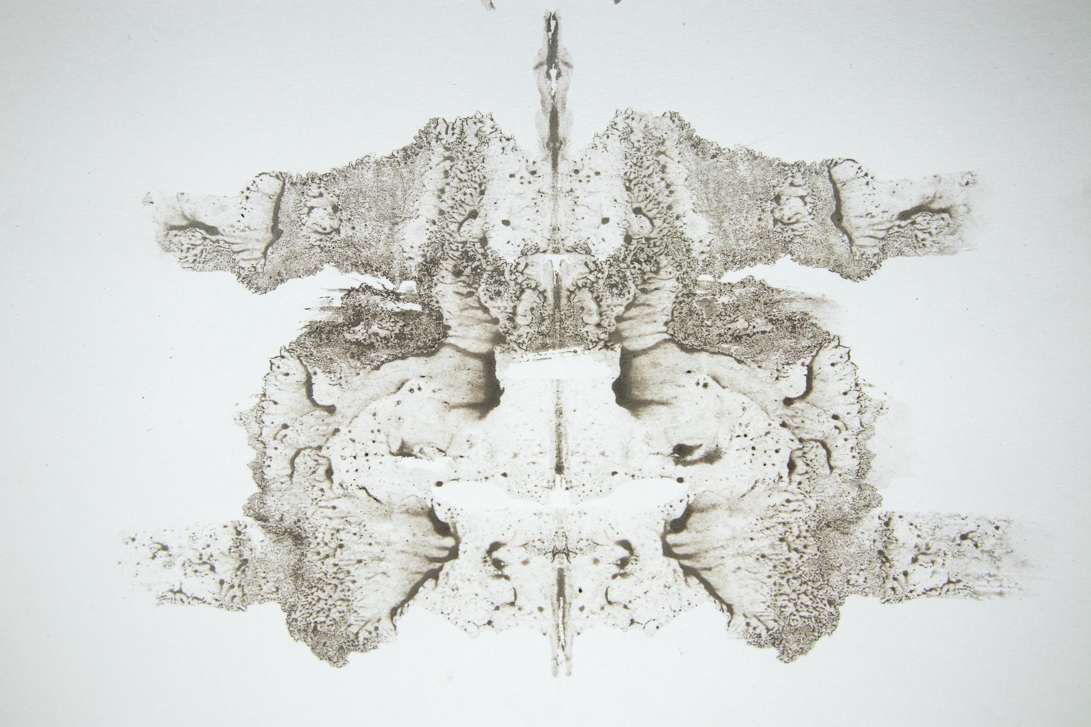 Seicodiagnostig Merched Chwarel - Slate Dust Rorschach blot, 2018