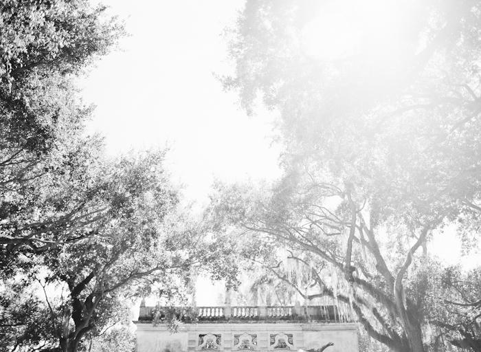 Michelle-March-Photography-Film-Miami-Wedding-Photographer-Vizcaya-Vintage-9