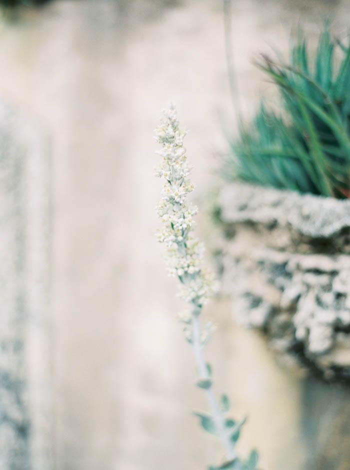 Michelle-March-Wedding-Photographer-Miami-Photography-Engagement-Vizcaya-Romantic-Garden-7