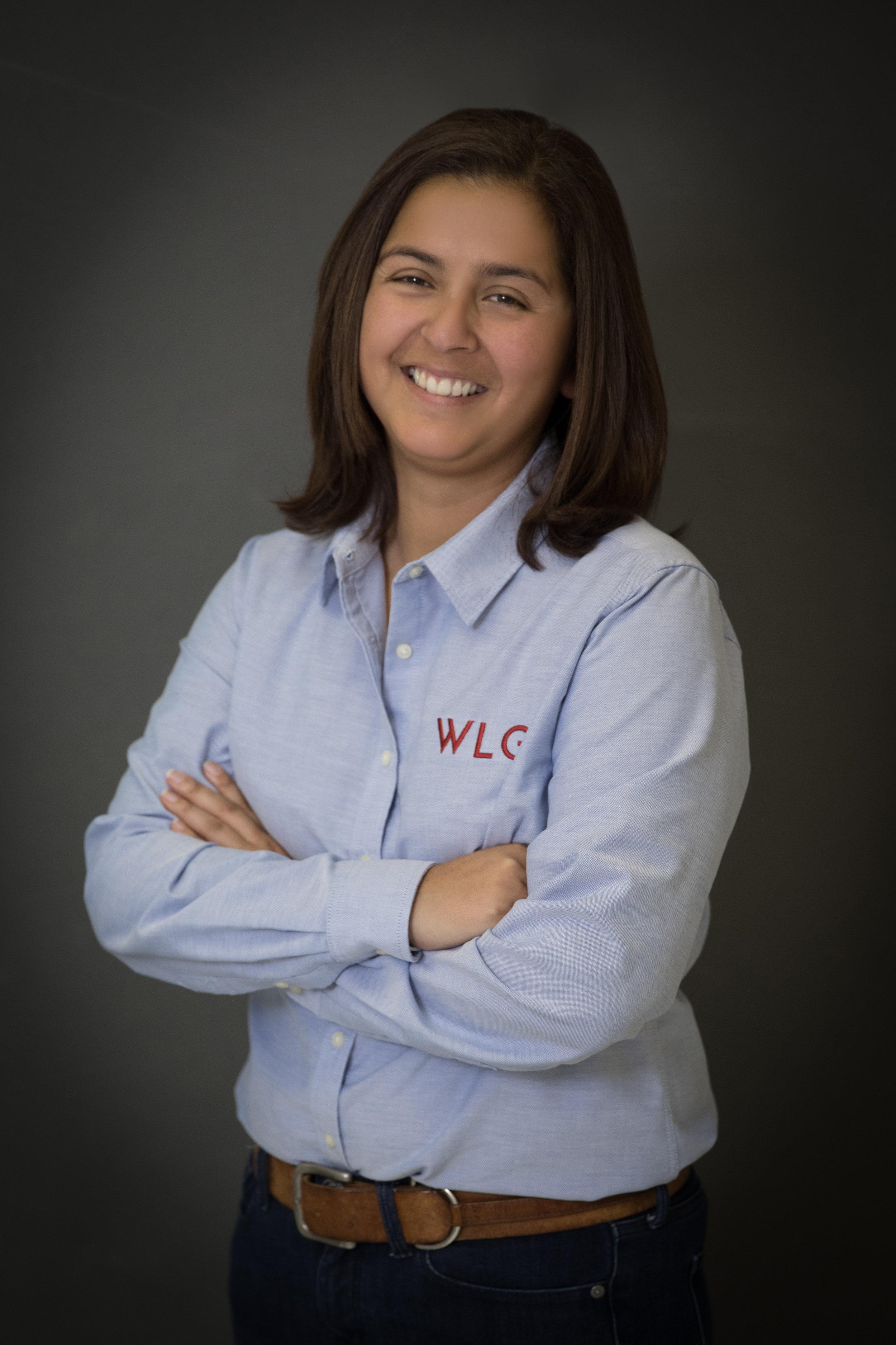 Gigi Gozzer, Project Management
