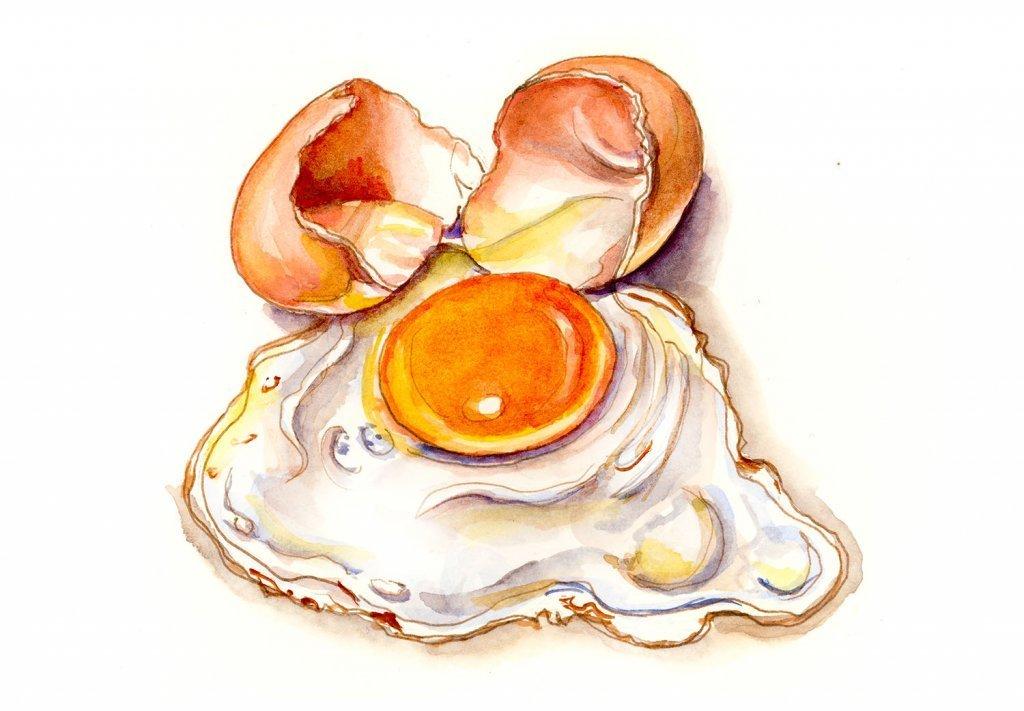 Day-3-Frying-An-Egg-On-The-Sidewalk-Illustration.jpg