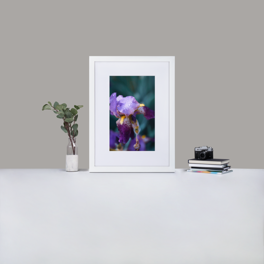 Splurge on Your Walls - They Deserve It