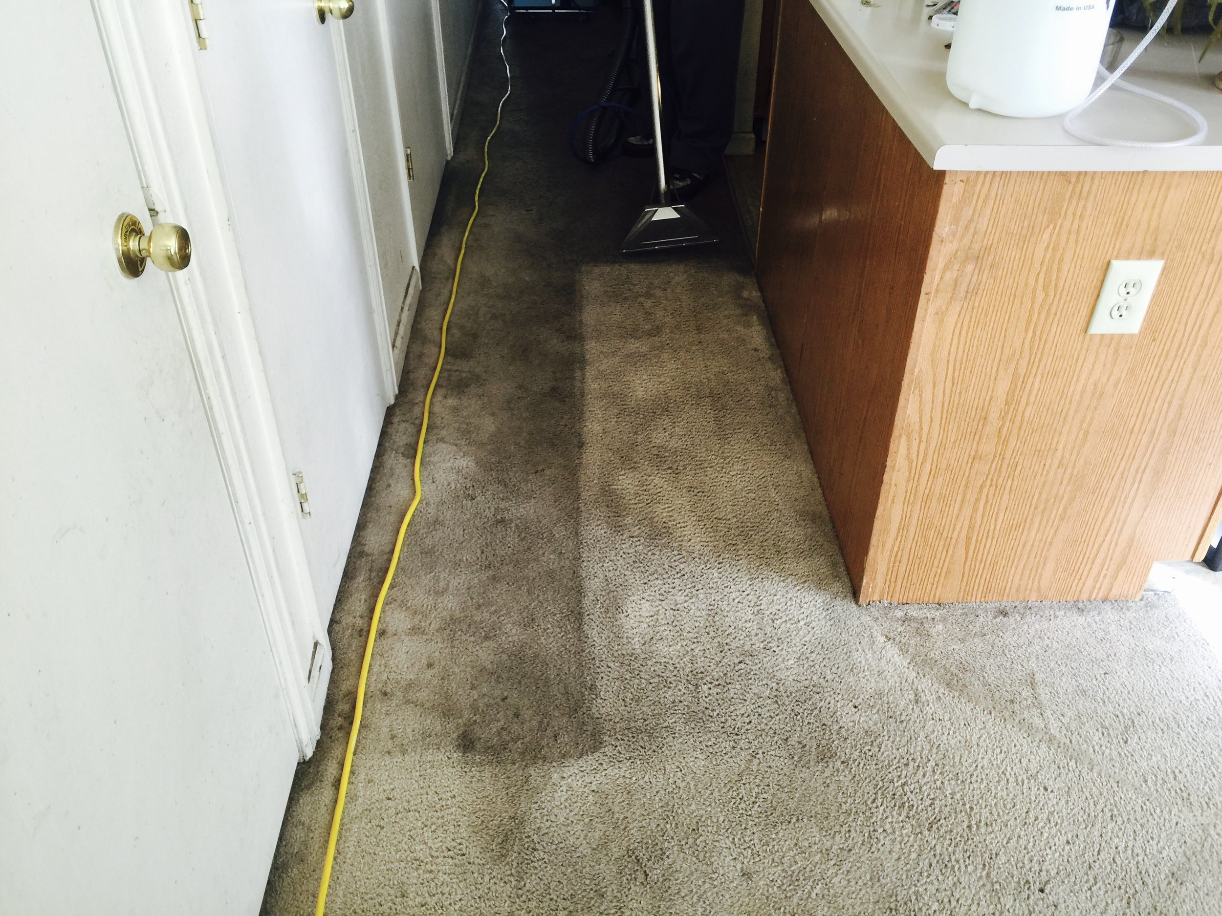 Carpet Cleaning - $60 per hourOur certified carpet cleaning technician is trained to know how to treat and clean your carpet professionally. From different types of carpet to chemicals you may need to treat troublesome areas we have the