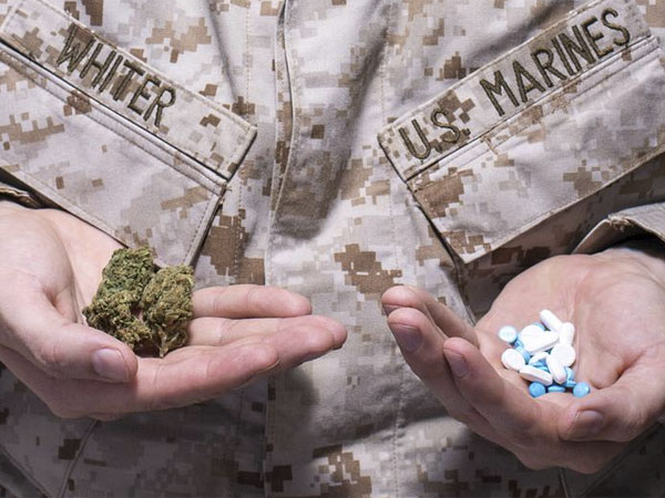 Military officers believe that cannabis could be a strong candidate to fight PTSD and prevent the use of opioids.