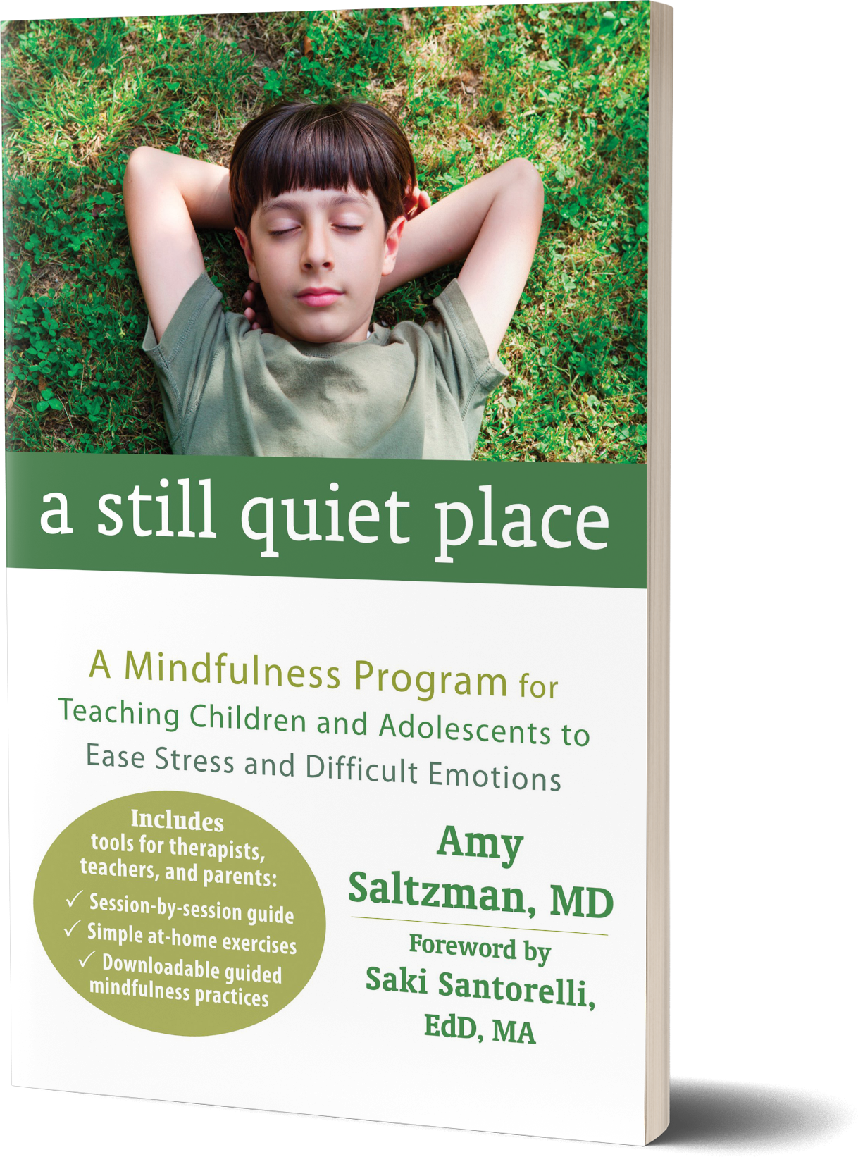 A Still Quiet Place- A Mindfulness Program for Teaching Children and Adolescents to Ease Stress and Difficult Emotions by Amy Saltzman, MD.png