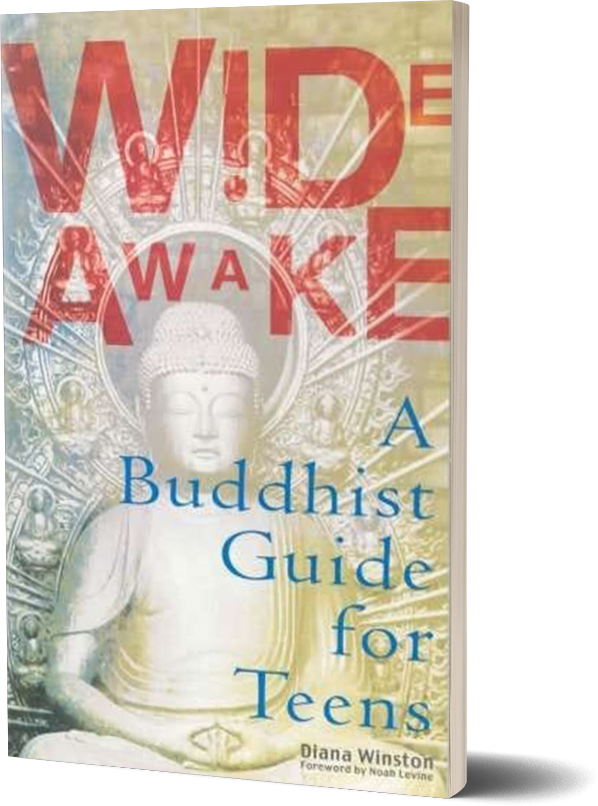 Wide Awake- A Buddhist Guide for Teens by Diana Winston.png