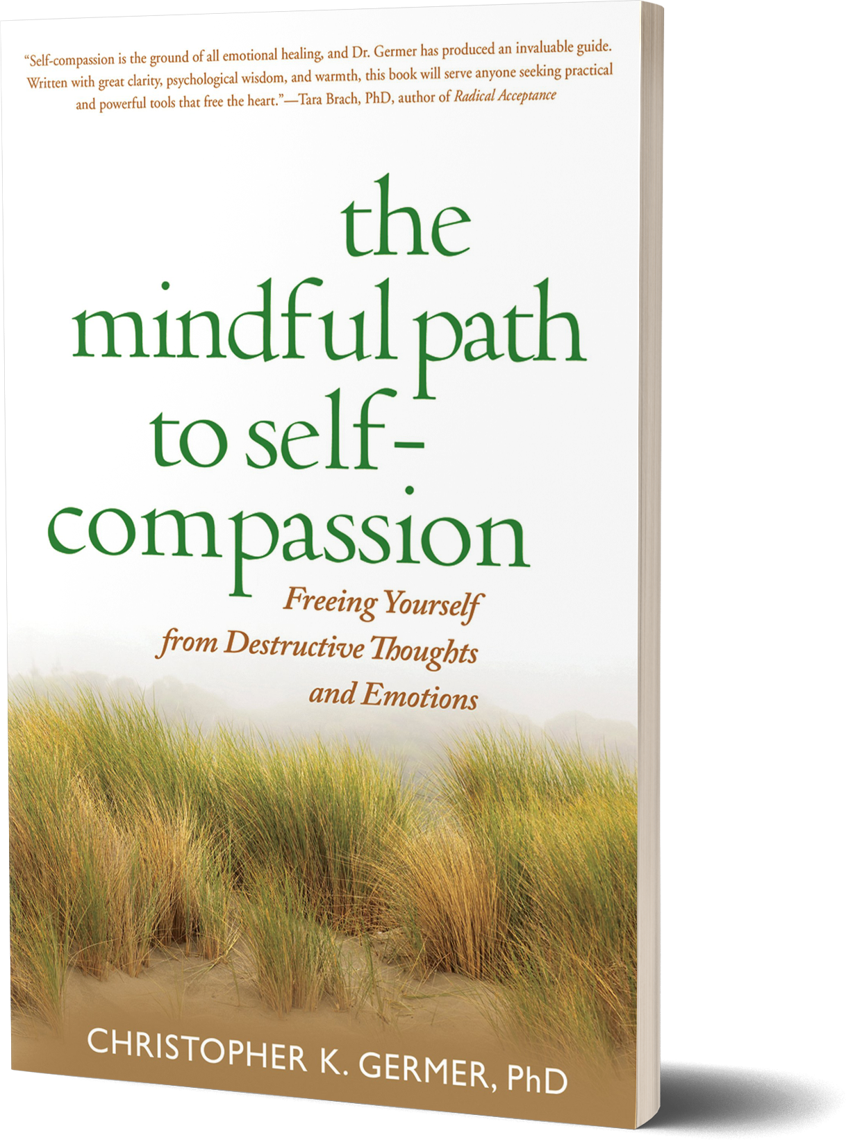 The Mindful Path to Self-Compassion- Freeing Yourself from Destructive Thoughts and Emotions by Christopher K. Germer, Ph.D.png