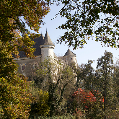 Frauenstein castle